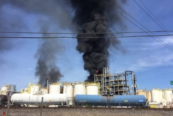 Failed Y-Strainer Led to Deadly Chem Plant Blast